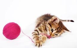 Kätzchen der getigerten Katze, das mit einem Ball des Garns spielt Stockbilder
