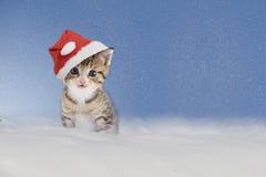 Kätzchen mit dem Weihnachtshut, der im Schnee sitzt Stockfotografie
