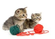 Kätzchen mit Kugel des Garns auf weißem Hintergrund stockbild