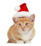Kätzchen mit Weihnachtshut Lizenzfreies Stockbild
