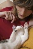 Kätzchen am Spiel Stockbild