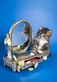 Kätzchen und ein Spiegel Lizenzfreie Stockfotografie