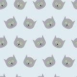 Kätzchenmuster Stockbilder