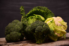 Kål blomkål, broccoli på svart bakgrund Arkivbild