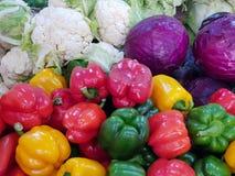 kål, blomkål, kinakål och spansk peppar arkivfoto