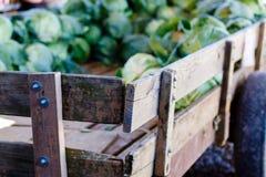 Kål i en wood vagn Royaltyfri Fotografi