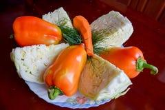 Kål, morötter och spanska peppar med dill Arkivfoton