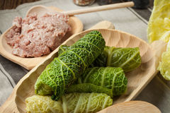 Kål rullar välfyllt med kött och grus Royaltyfria Foton
