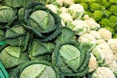 Kålgrönsaker Broccoliromanesco och blomkål Royaltyfri Foto