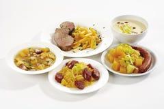 Kålrotgrönsaker med kött, olik disk royaltyfria bilder