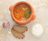 Kålsoppa är en traditionell maträtt av rysk nationell kokkonst Royaltyfri Bild