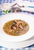 Kålsoppa shchi med den franska plommonet och bacon Arkivfoton