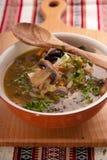 Kålsoppa shchi med den franska plommonet och bacon Arkivbild