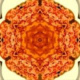 Kółkowy kalejdoskop wzrastał dla sztandaru lub karty Zdjęcie Royalty Free