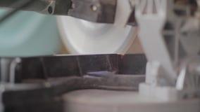 Kółkowy zobaczył cięcia według markiera zamkniętego w górę drewniana deska Pracujący proces w meblarskiej fabryce Zawód zdjęcie wideo