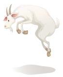 Kózka ilustracji
