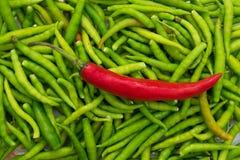 Kózki pieprzowy i zielony chili fotografia royalty free