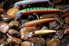 Köderfischen Stockfoto