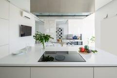 Kök i modern stil arkivfoto