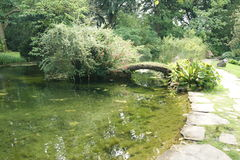 Köln. Japanese garden in the Köln royalty free stock image