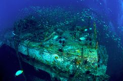König Cruiser Wreck Stockfotografie