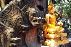 König Of Nagas Lizenzfreies Stockfoto