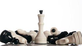 König und Ritter des Schachbrettes lokalisiert auf weißem Hintergrund Lizenzfreie Stockbilder
