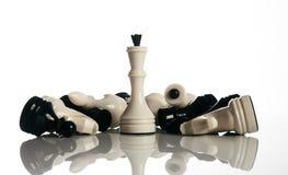 König und Ritter des Schachbrettes lokalisiert auf weißem Hintergrund Lizenzfreie Stockfotos