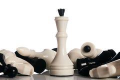König und Ritter des Schachbrettes lokalisiert auf weißem Hintergrund Lizenzfreies Stockbild