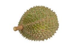 König von Früchten, Durian lokalisiert auf weißem Hintergrund Stockfoto
