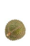 König von Früchten, Durian lokalisiert auf weißem Hintergrund Lizenzfreie Stockfotos