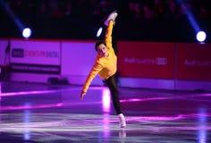 Könige auf Eis Stockbilder