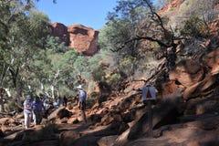 Könige Canyon im Nordterritorium Australien lizenzfreies stockfoto