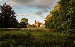 Könige College, Cambridge Stockfoto