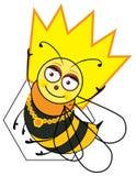 Königin-Biene Stockbild