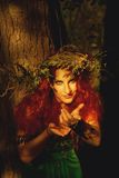 Königin des Waldes Stockbild