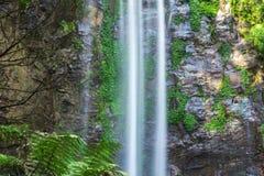 Königin Mary Falls Stockbild