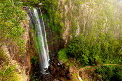 Königin Mary Falls des Hauptverbreitungsgebiet-Nationalparks lizenzfreies stockbild