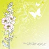Königliche Blume Lizenzfreie Stockbilder