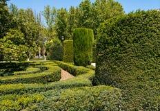 Königliche Gärten in Madrid stockbilder
