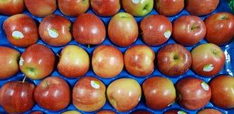 Königliche Galaäpfel süß und köstlich stockfoto