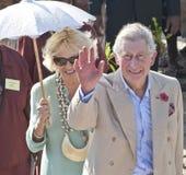 Königliche Welle von einem Königspaar Lizenzfreie Stockfotos