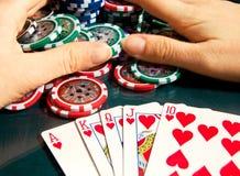 Königlicher greller Gewinn im Poker und in weiblichen Händen, die Bank ergreifen Stockfoto