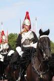 Königlicher Schutz auf Pferderückseite Stockbilder