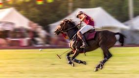 Königliches Polo Lizenzfreies Stockfoto