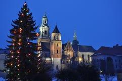 Königliches Wawel Schloss Lizenzfreies Stockfoto