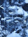 Königreich des Winters Lizenzfreies Stockbild