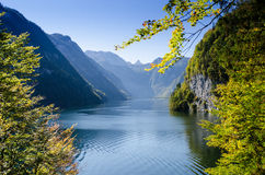 Königssee from Malerwinkel Stock Images