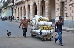Können Abgassammler, Havana, Kuba stockfotos