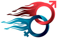 Könsbestämma brand Fotografering för Bildbyråer
